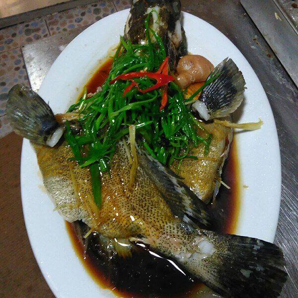 美味的药膳石斑鱼