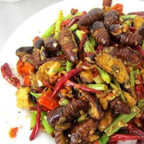 红辣椒煸蚕蛹