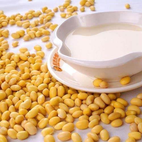 简易版养生杂豆豆浆
