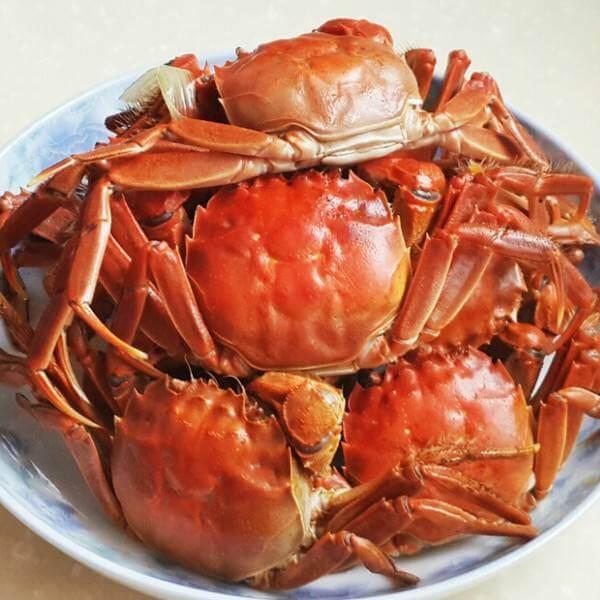 清蒸蜘蛛蟹