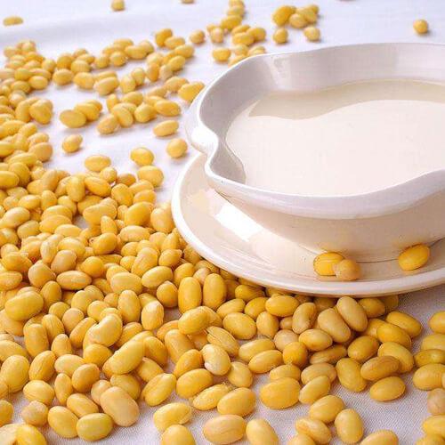 薏仁黄豆豆浆