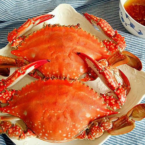 香辣梭子蟹的做法