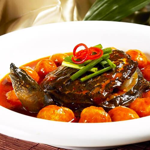 可口黄焖甲鱼
