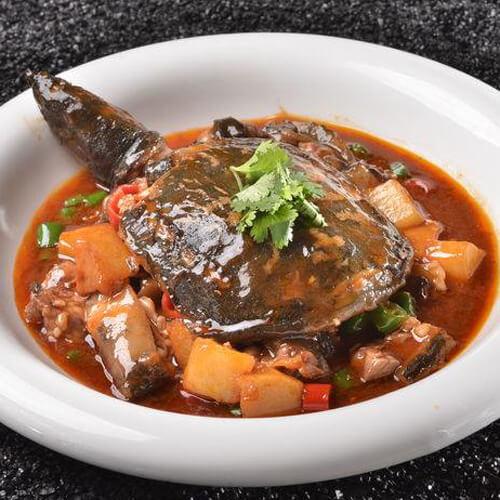 美味的红烧甲鱼的做法
