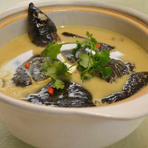 美味甲鱼汤的做法