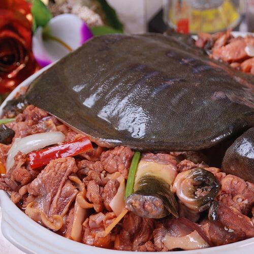 美味的鸡汤炖甲鱼