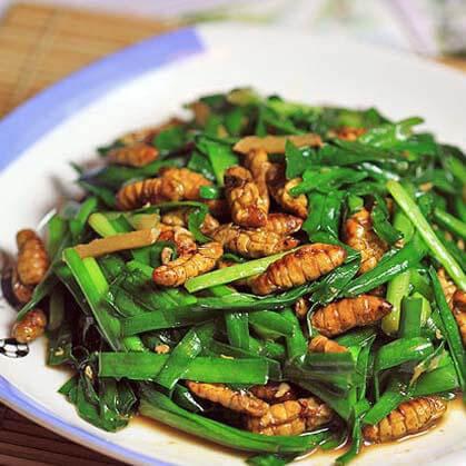 蚕蛹炒韭菜