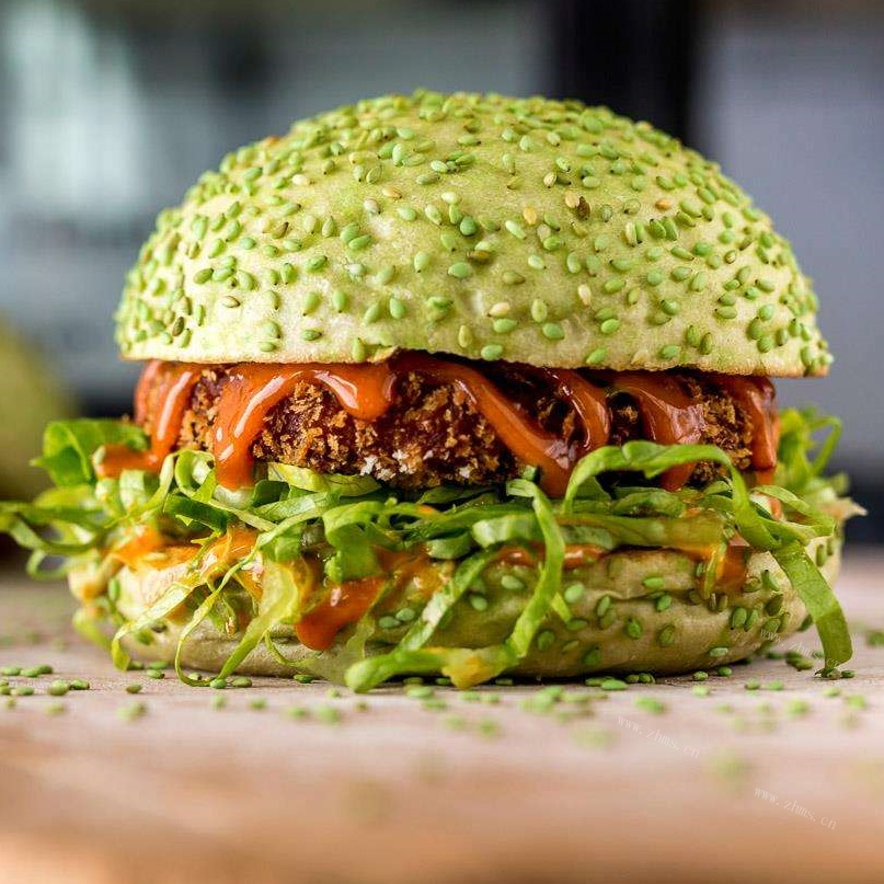 一个拥有高瞻远瞩发展态度的品牌——麦基客汉堡