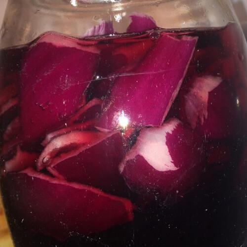 养生洋葱葡萄酒的做法