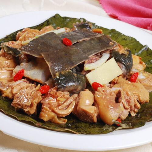 自制鸡汤炖甲鱼