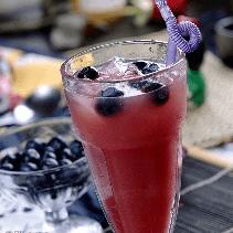 桃源泉野生蓝莓果汁