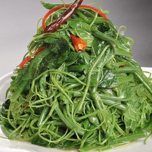 鲜菇龙须菜