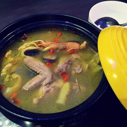 营养药膳鸡汤