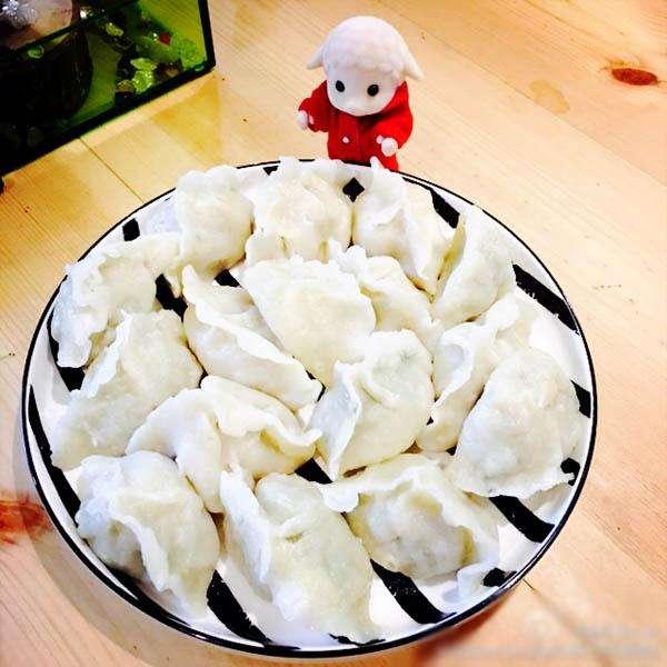 香喷喷的茴香苗饺子