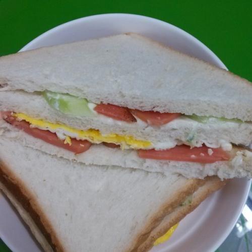 营养的沙拉三明治