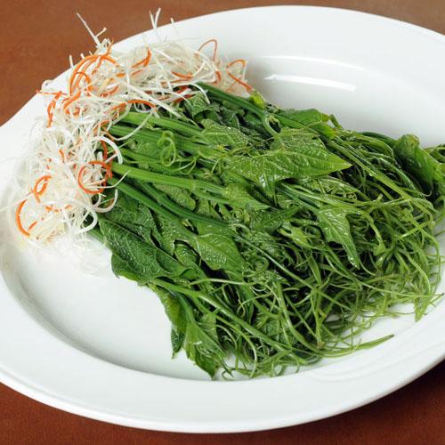 清香的龙须菜