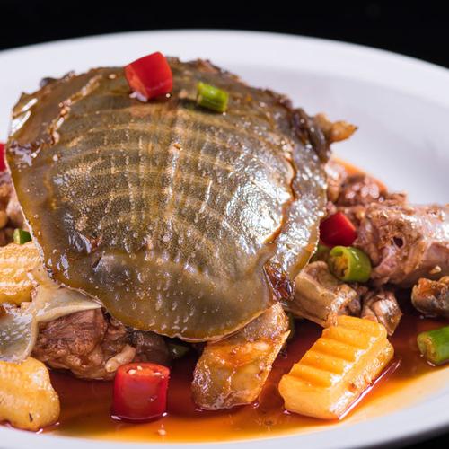 有特色的红烧甲鱼的做法