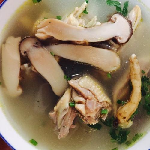 松茸菌炖鸡