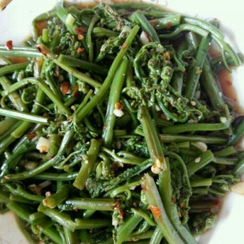 好吃不腻的酸辣蕨菜