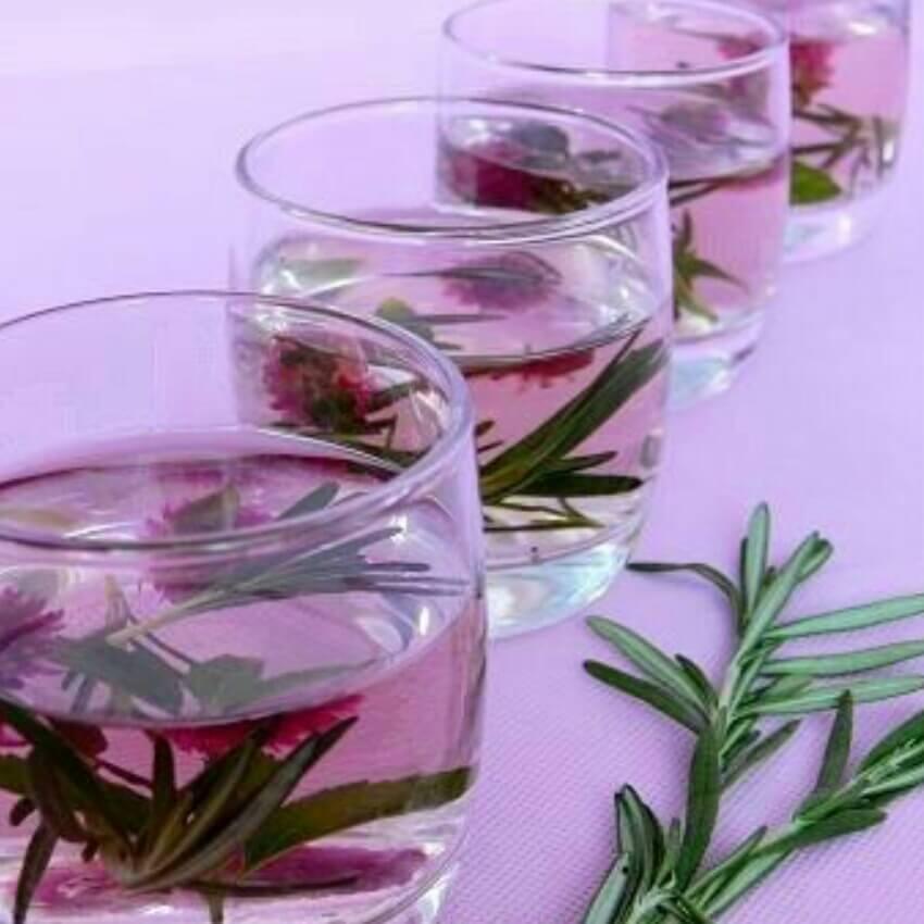 迷迭香红茶