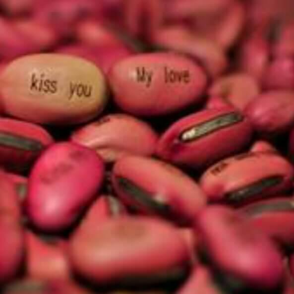 快乐甜蜜豆