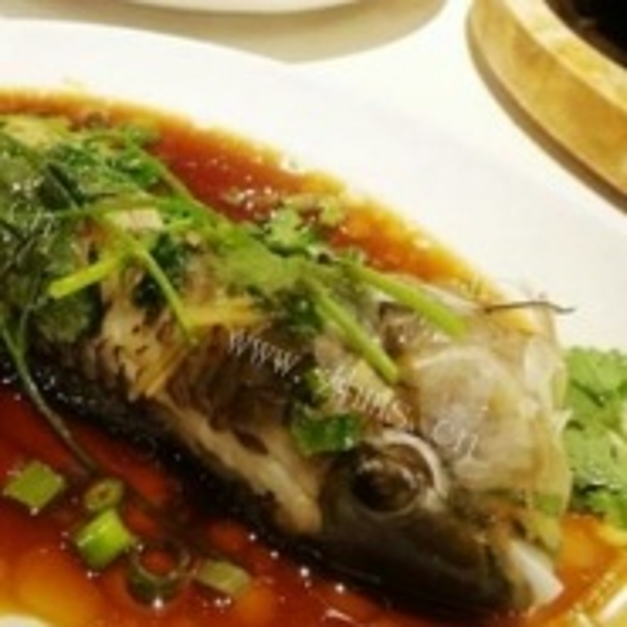 清蒸鹦鹉鱼