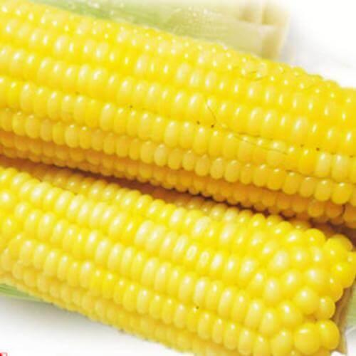牛油香草玉米