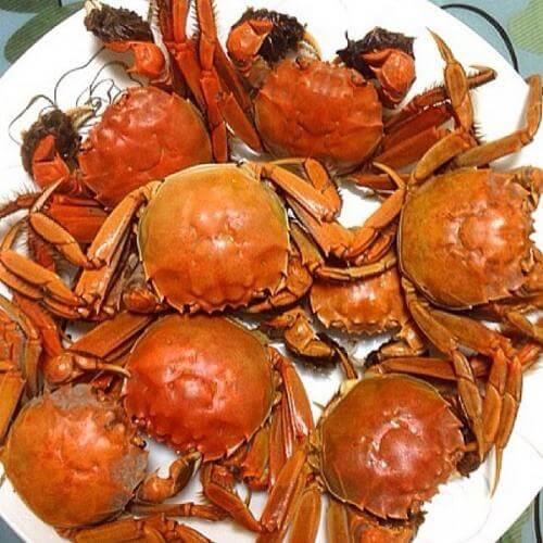 美味清蒸大闸蟹