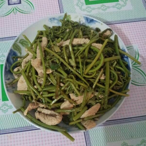 蕨菜炒肉丝