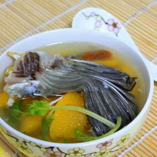 木瓜鱼尾汤
