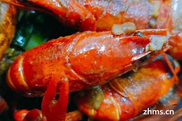 阿青龙虾加盟优势