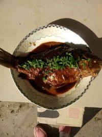 下饭的红烧鲫鱼