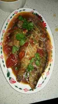 美味的茄汁鲈鱼