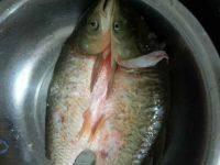 自制酸菜鱼的做法图解一
