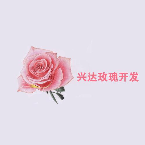 兴达玫瑰开发
