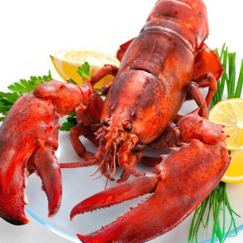 龙虾品牌排行榜