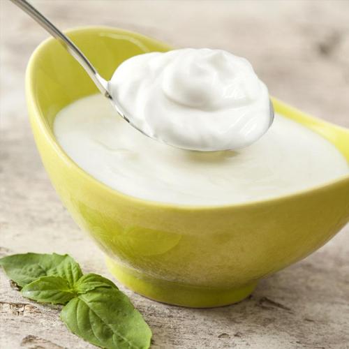 酸奶加盟费