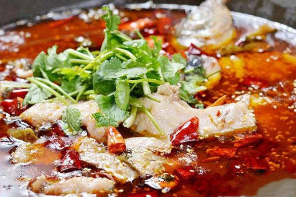 姜太公鱼火锅加盟条件