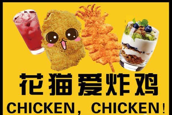 花猫爱炸鸡品牌介绍图3