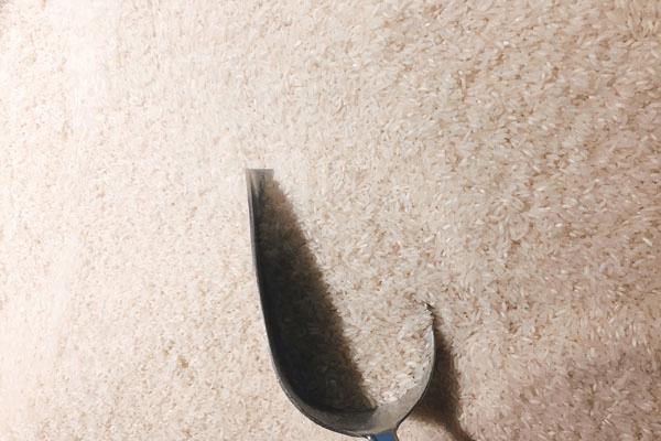 大米营养成分有哪些?如何挑选大米?