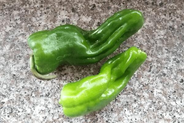 好吃的青椒牛柳你会做吗第二步