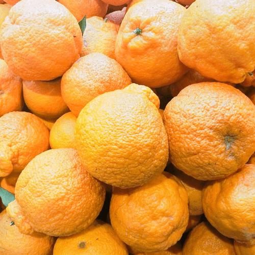 加盟水果捞甜品
