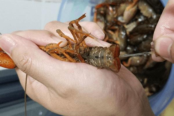 家庭版小龙虾,夜宵不用等天黑第二步