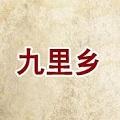 九里乡石锅鱼