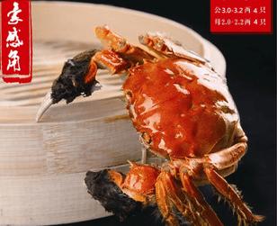 豪感角西餐品牌介绍图2