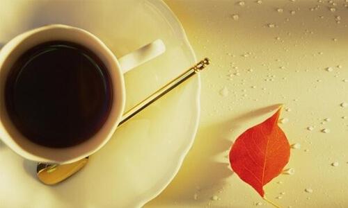 甜甜圈咖啡品牌介绍