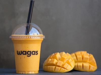Wagas沃歌斯图2