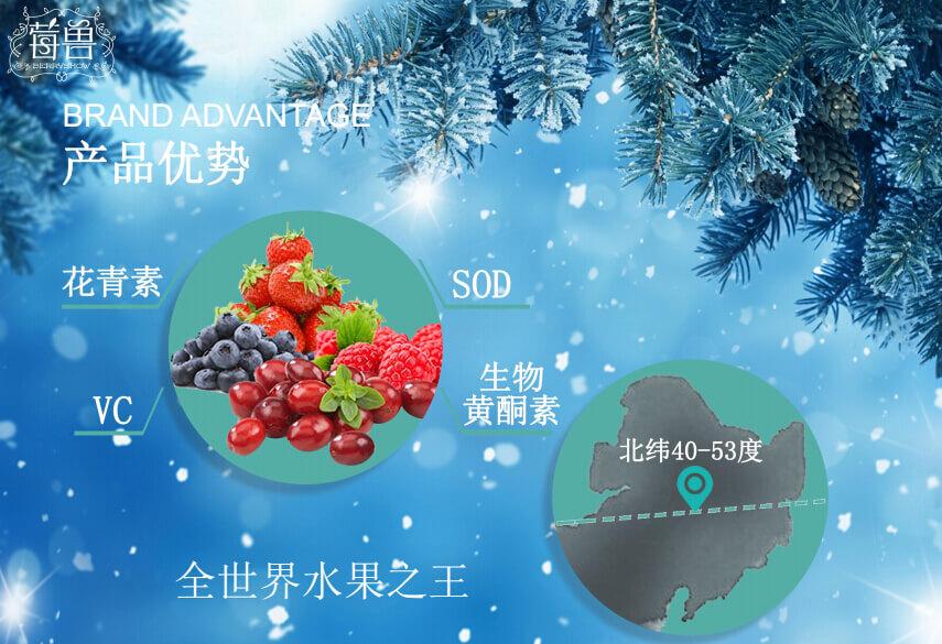 莓兽饮品品牌介绍图5