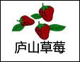 庐山草莓基地