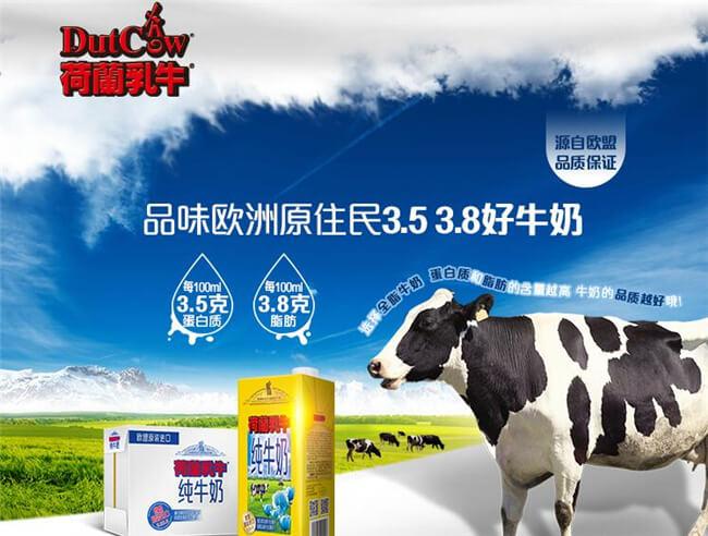 荷兰乳牛饮品品牌介绍